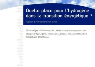 Quelle place pour l'hydrogène dans la transition énergétique?