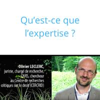 Tous experts ? Analyse juridique de la qualité d'expert (2)